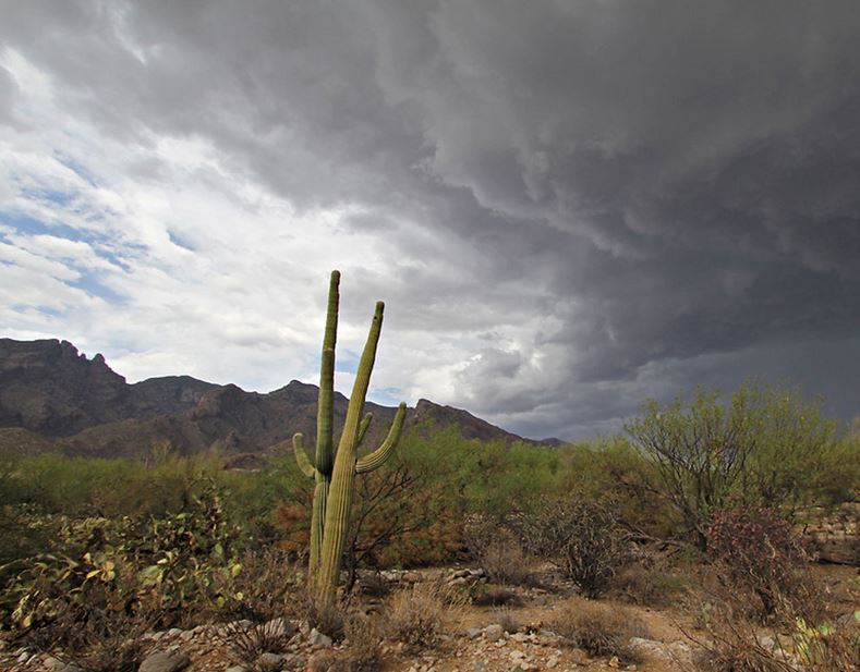 Monsoon storm in southern Arizona