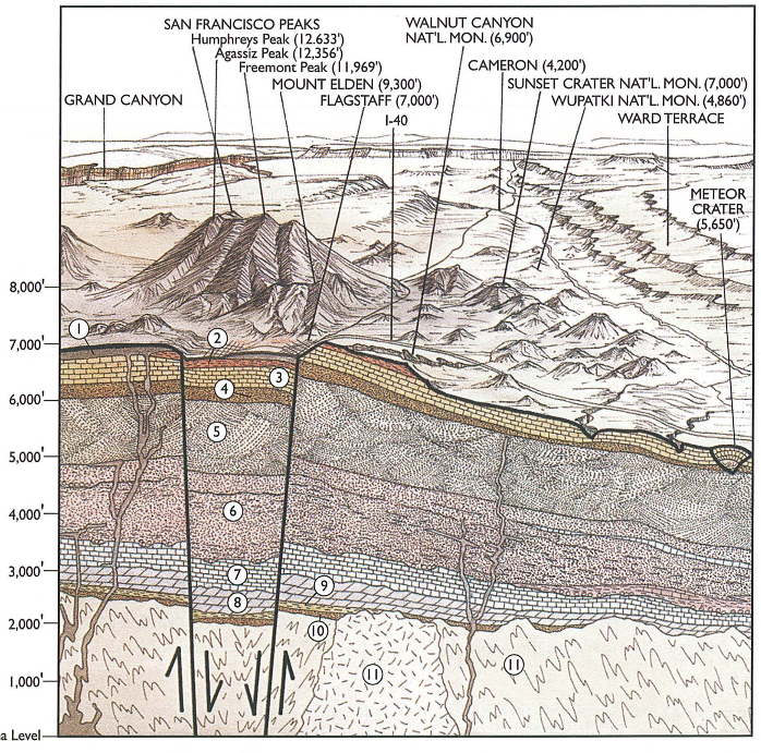 Cross section through Flagstaff area on Colorado Plateau