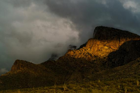 Putsch Ridge, Santa Catalina Mountain, Arizona